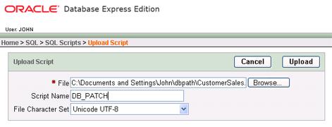 Upload Oracle database update script