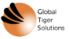 Global Tiger Solutions