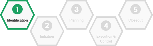 The Identification Phase of the IT Project Management Lifecycle